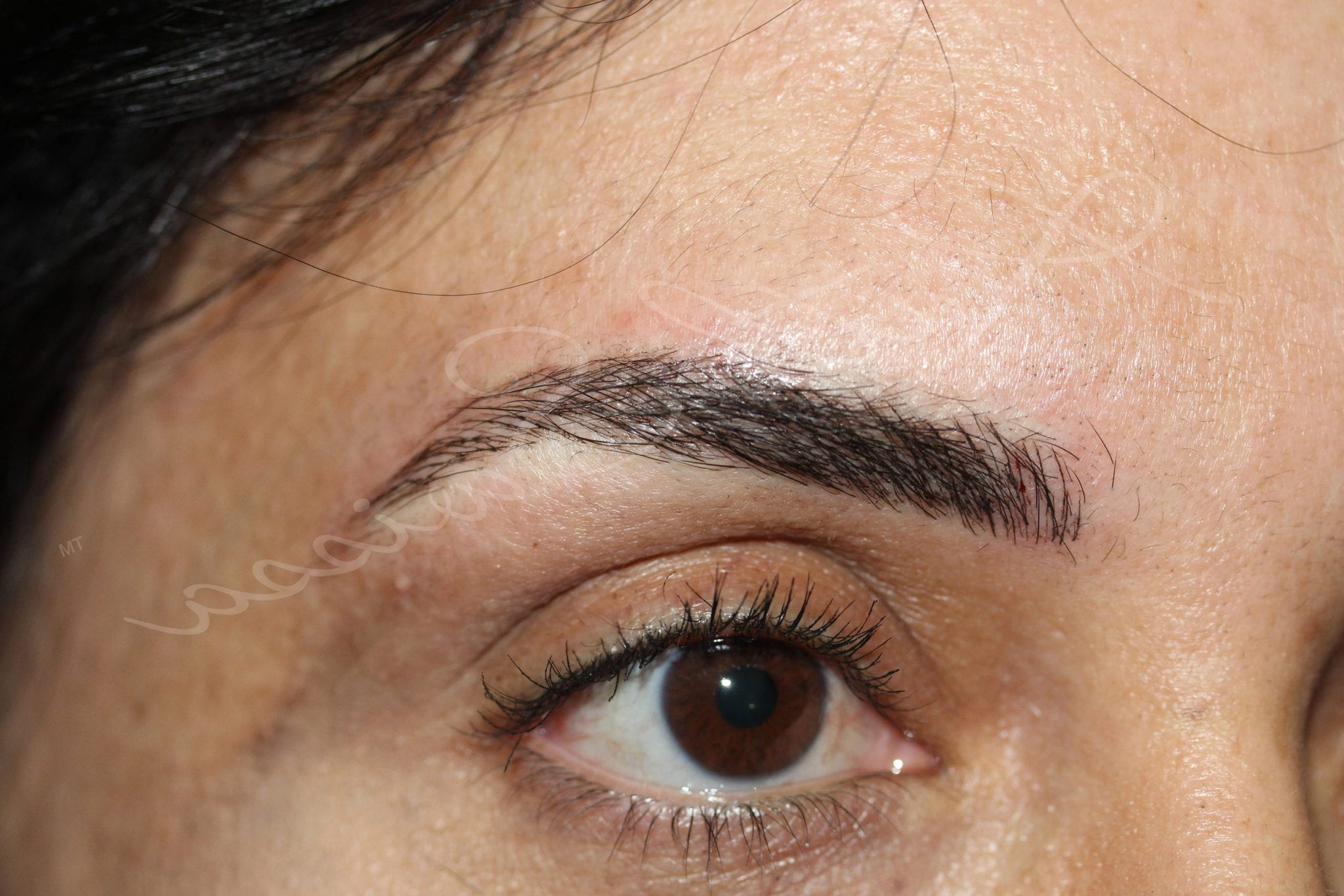 Permanent Eyebrows Los Angeles | Ruthswissa com
