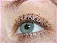 gallery-eyeliner_50a-1